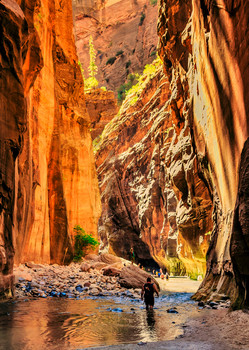 Zion Nat Park, The Narrows - Postcard