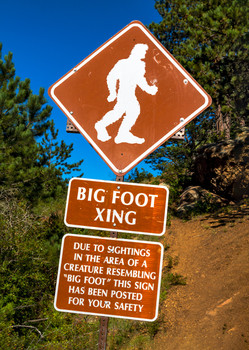 Bigfoot - Postcard