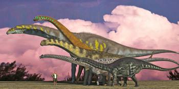 Sauropods - LongCard