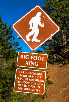 Bigfoot - Magnet