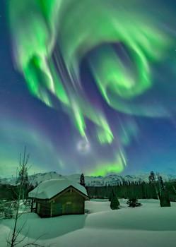 Aurora 13 - Postcard