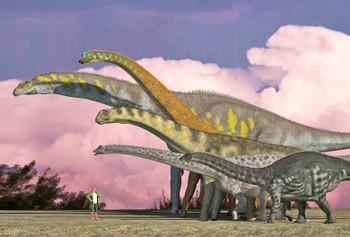 Sauropods - Magnet
