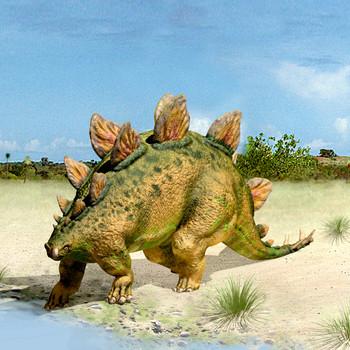Stegosaurus Maxi Card