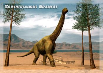 Brachiosaurus Postcard