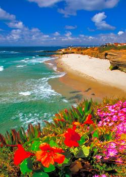Wipeout Beach, San Diego - Postcard