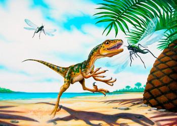 Scipionyx Samniticus - Postcard