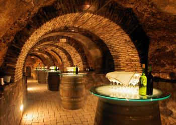 Wine cellar - Postcard
