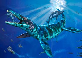 Liopleurodon - Postcard
