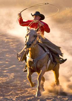 Cowboy - Postcard