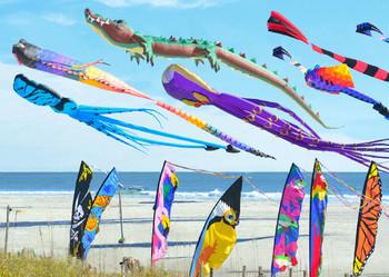Kites - Postcard