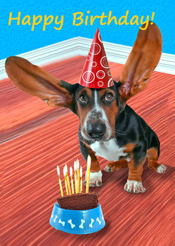 Happy Birthday Basset Hound Postcard