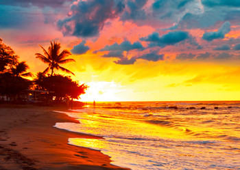 Tropical Sunset - Postcard