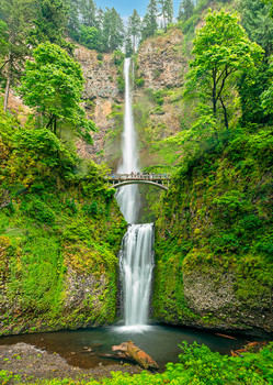 Multnomah Falls, Oregon - Postcard