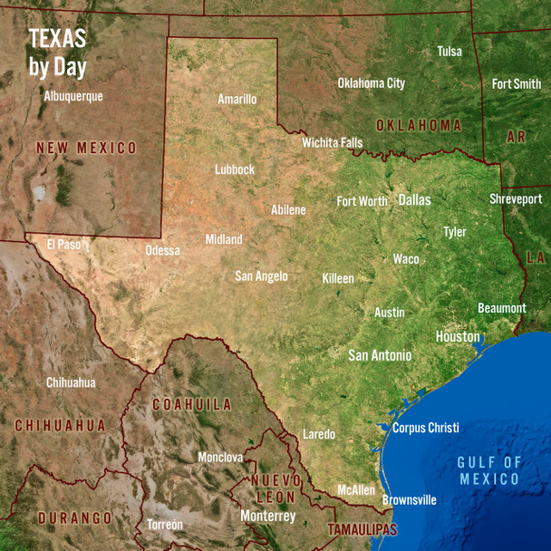 Texas Day Night Map Maxi Card