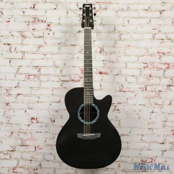RainSong Concert CO-WS1000N2 Acoustic-Electric Guitar x9683