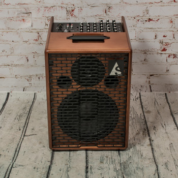 Acoustic Solutions by Godin ASG-150 Acoustic Guitar Combo Amplifier (USED) x0618