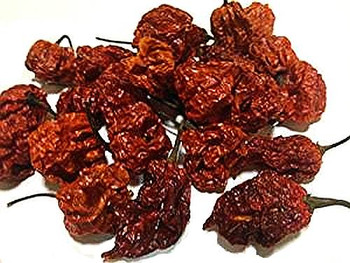BULK Scorpion Pepper Dried Chili Pods