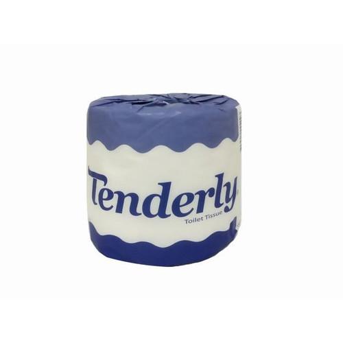 ABC  Toilet Paper Tenderly 2Plyx400Sheet,48'S H-400