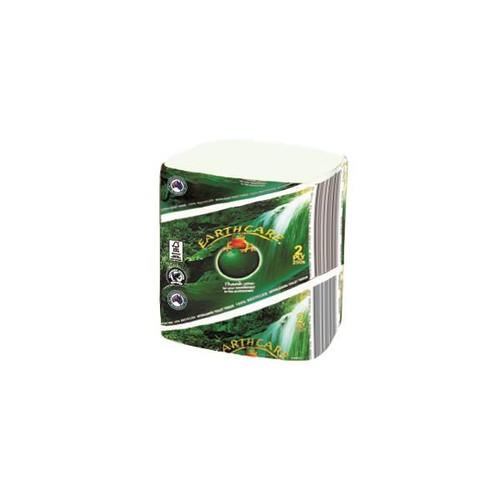 EarthCare T/Tissue 2ply x 250sheets, 36pkts