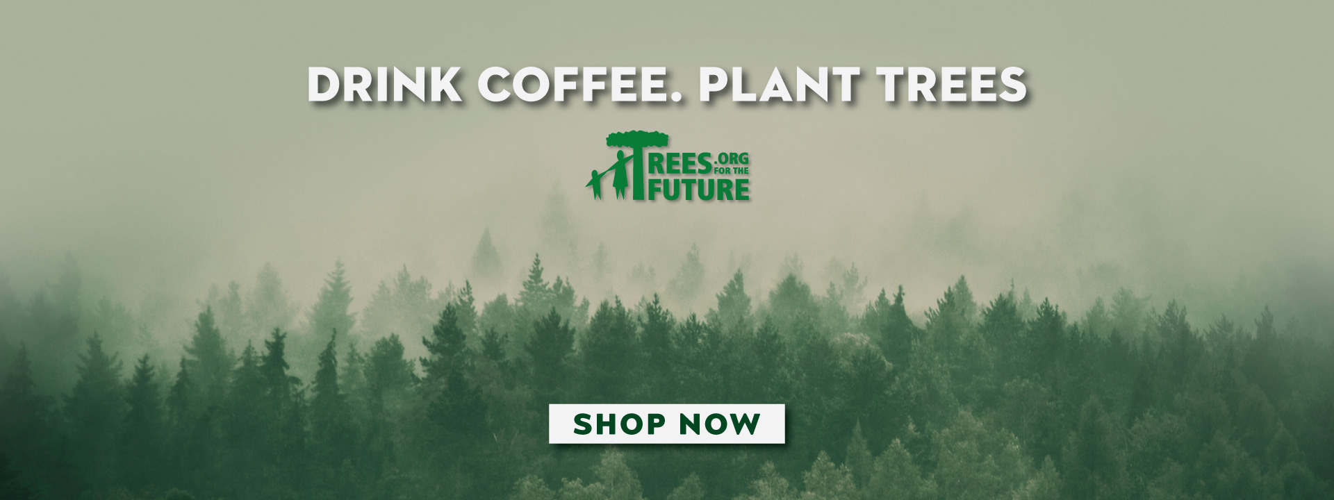 drink-coffee-plant-trees