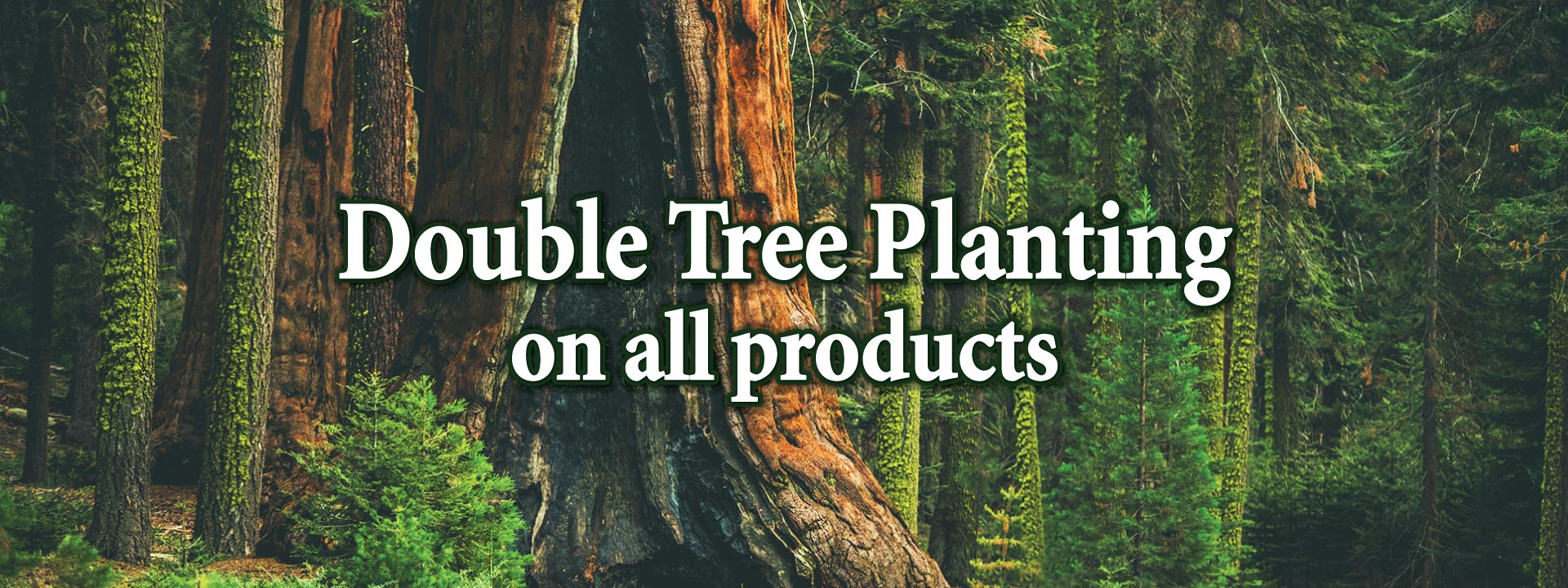 double-tree-planting