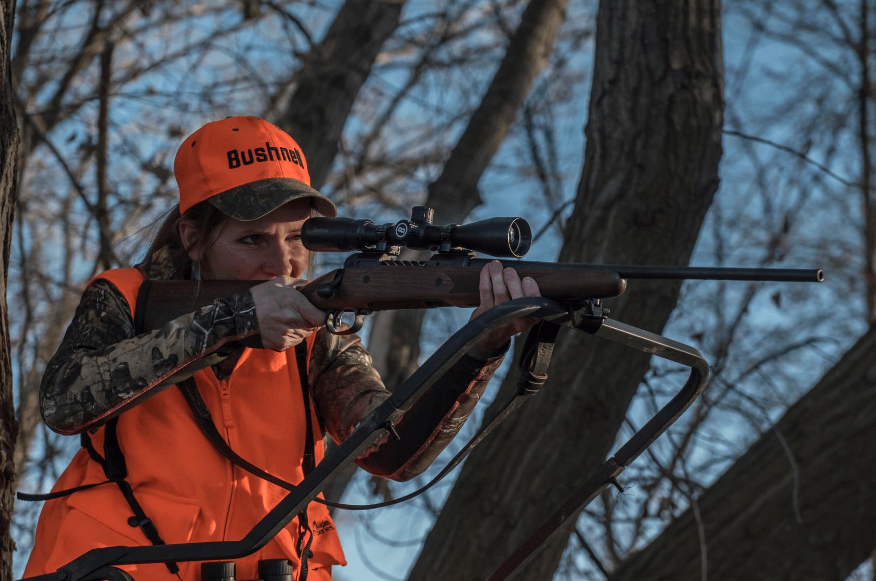 Gun Sight Systems For Beginners