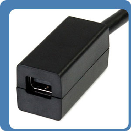 6 Inches DisplayPort Male to Mini DisplayPort Female Video Cable Adapter