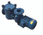 Certikin BP Commercial Pool Pump