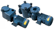 Certikin BP Commercial Swimming Pool Pumps 1500rpm and 3000rpm