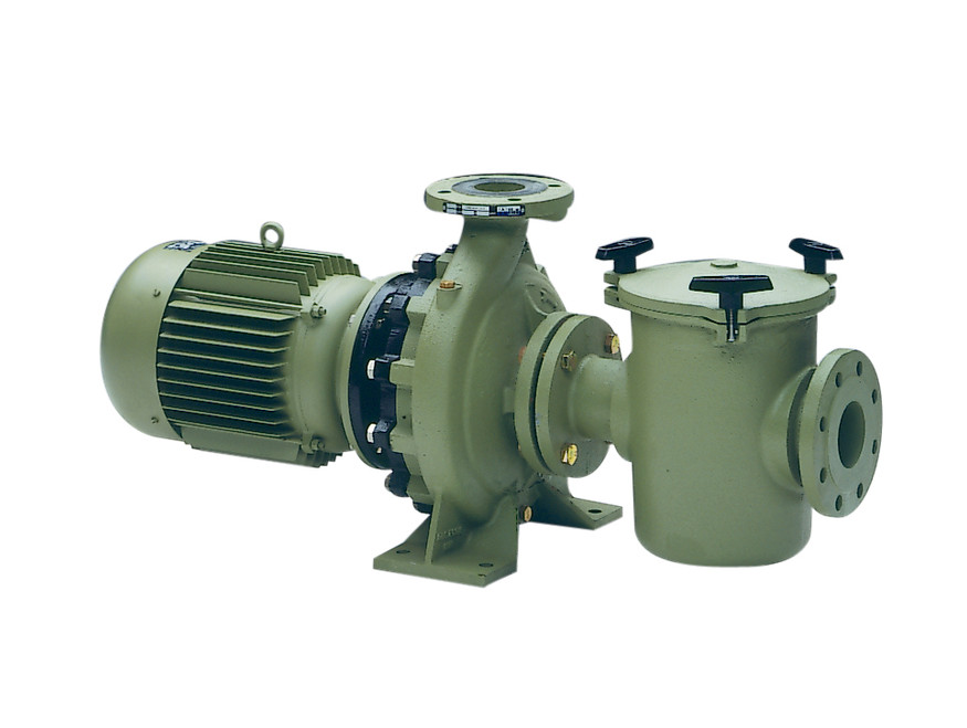 Astral Aral C1500 Centrifugal Commercial Swimming Pool Pump