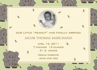 Birth Announcement-Elephant