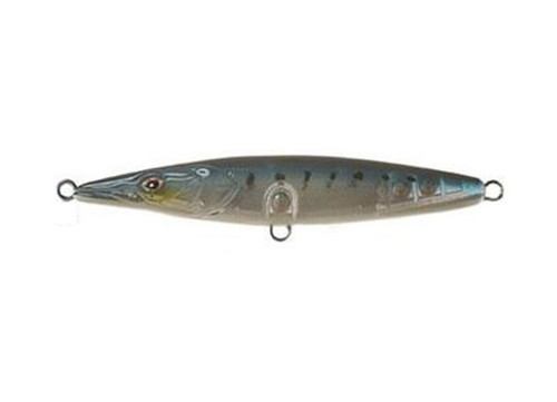 Xorus Asturie 150 Anchovy