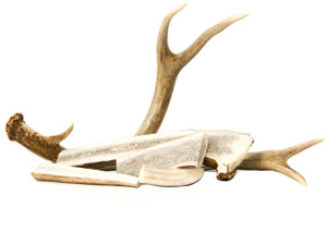 Custom Cut Antler Chews for Dogs and Cats