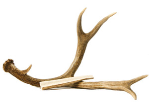 Medium Antler Chews for Dogs and Cats