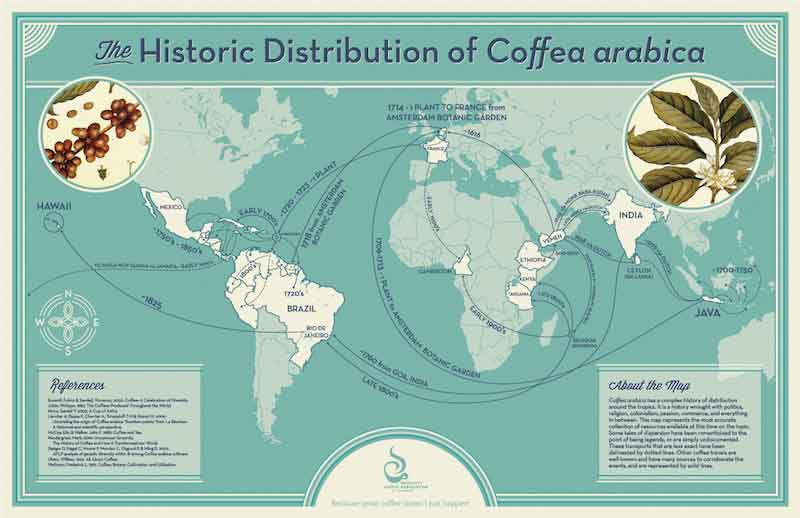 history-of-coffea.jpg