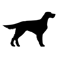 Gordon English Setter Logo