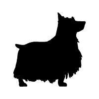 Silky Terrier Logo