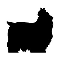 Yorkshire Terrier Logo
