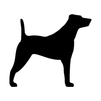Jack Russell Terrier Logo
