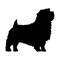 Norfolk Terrier Logo