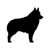 Schipperke Logo