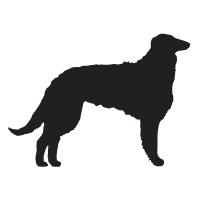 Borzoi Logo