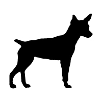Rat Terrier Logo