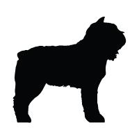 Bouvier Des Flandres Logo