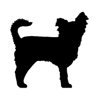 Long Hair Chihuahua Logo