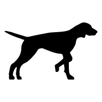 English Pointer Logo