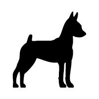Miniature Pinscher Logo