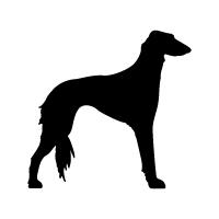 Saluki Logo