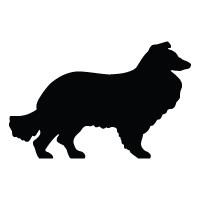 Collie Logo
