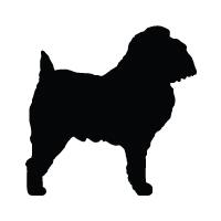 Brussels Griffon Logo